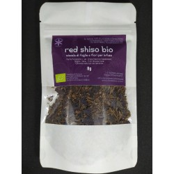 Purple Perilla Organic herbal tea (Red Shiso-Japanese Basil)